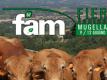 FAM – Fiera Agricola MugellanaUsato in offerta a Firenze